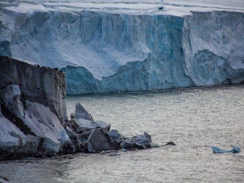 """""""In bilico"""": gli scienziati avvertono del rapido scioglimento del """"ghiacciaio del giudizio universale"""" dell'Antartide"""