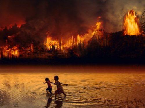 Incendi dell'Amazzonia: un'enorme ondata di incendi registrata tra le crescenti preoccupazioni per la ripetizione della distruzione dell'anno scorso