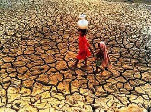 L'umanità sta dichiarando guerra alla natura, afferma il segretario generale delle Nazioni Unite