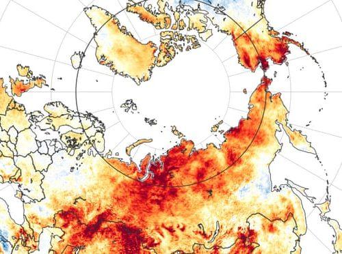 Crisi climatica: il 2020 è stato l'anno più caldo mai registrato
