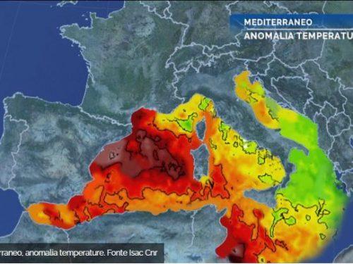 Ambiente, nel 2020 record di temperatura delle acque marine. Mediterraneo in testa