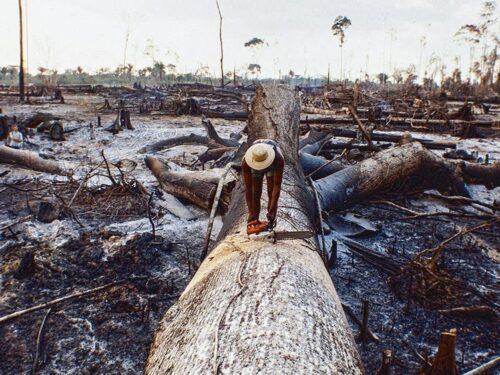 Joe Biden e Jair Bolsonaro si affrontano sull'Amazzonia